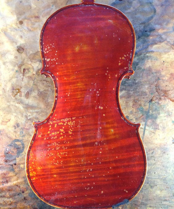 Violin varnish salvage and repair