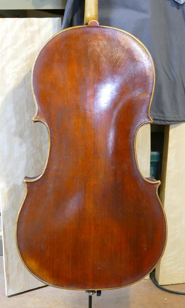 Tononi-model-back2
