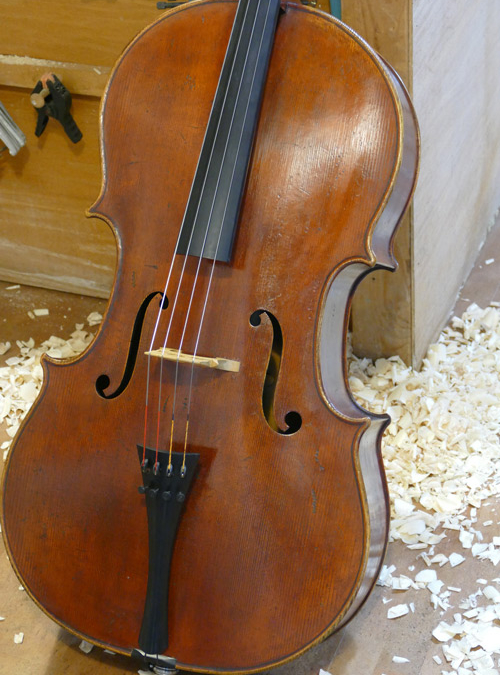 Tononi Model Cello