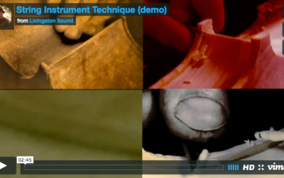 Cello Making, Sight and Sound